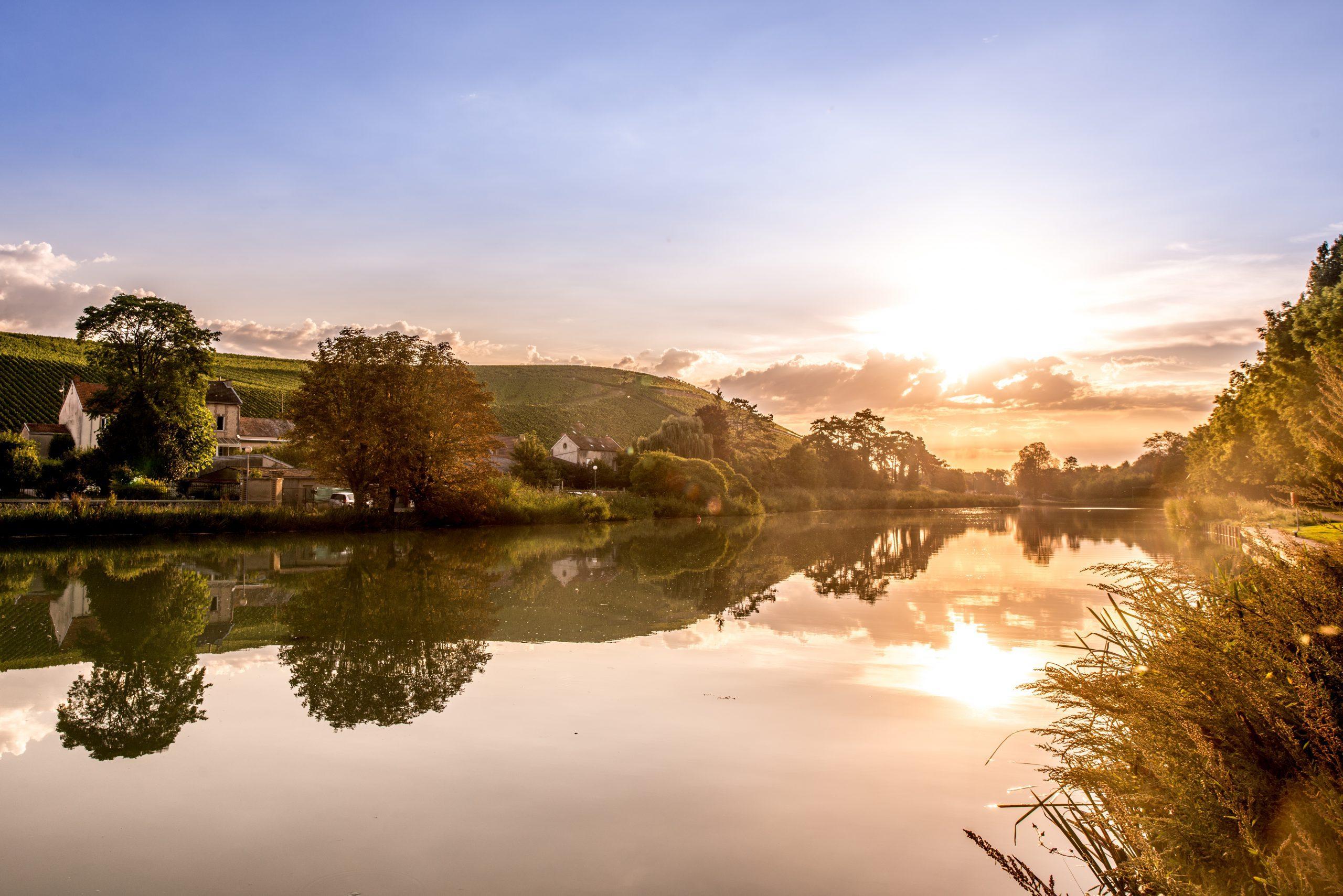 Mareuil-sur-Ay - Champagne Philipponnat
